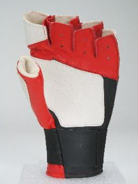 Picture of Pro-Master II Glove Fingerless