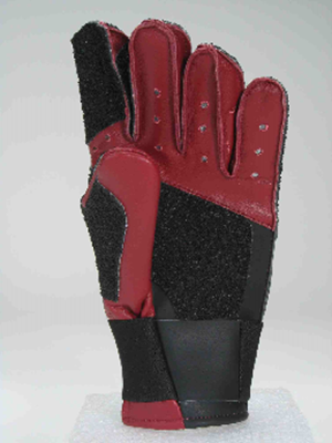 Picture of Pro-Master III Glove