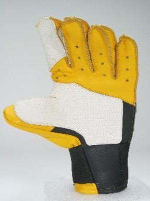 Picture of Pro-Master II Glove